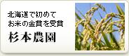 北海道で初めてお米の金賞を受賞 杉本農園